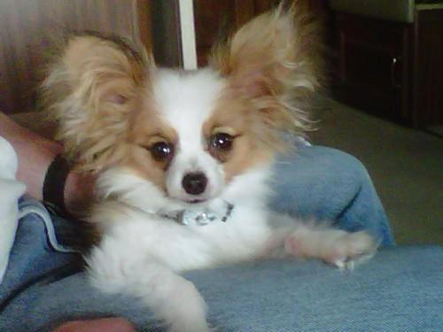 Precious adorable me!
